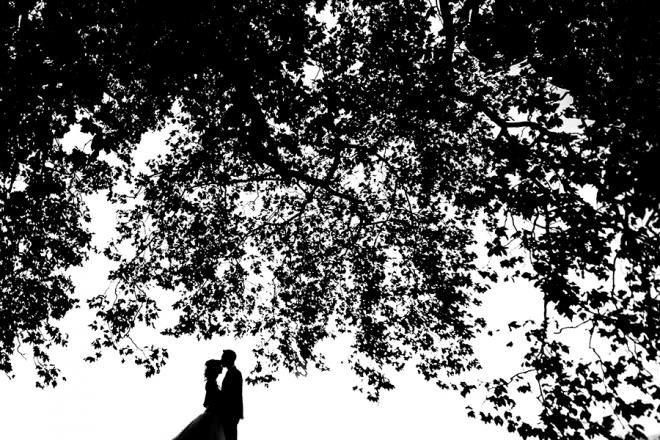 wedding photo in Chianti